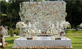 wedding venue in casa velas